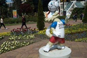 Người dân Sochi được phép nghỉ làm ở World Cup 2018