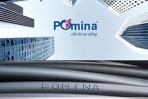 Người nhà Chủ tịch HĐQT Pomina liên tục mua vào cổ phiếu POM