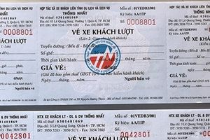 Thông tin thêm về HTX Thống Nhất trốn thuế