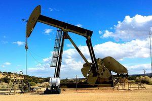 Giá dầu leo dốc bất chấp sản lượng dầu Saudi Arabia tăng
