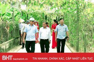 Hà Tĩnh chia sẻ xây dựng nông thôn mới với tỉnh Ninh Thuận