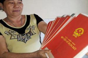 Khốn khổ vì nợ, dân trồng mía 'nộp' 69 sổ đỏ cho thương lái