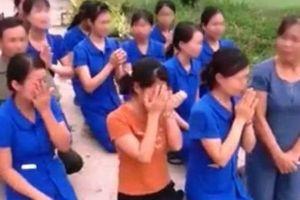 Nghệ An: Giáo viên quỳ khóc xin dạy, chính quyền cho rằng đó là dàn dựng?