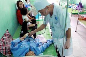 Thái Bình: Nhiều người nhập viện nghi do ăn tiết canh lợn