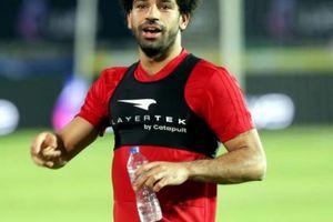 Bình phục thần tốc, Salah sẵn sàng 'chiến' Uruguay