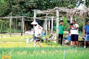 Thúc đẩy du lịch nông nghiệp các tỉnh miền Trung