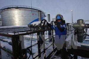 Hai nhà sản xuất dầu mỏ hàng đầu thế giới đánh đi tín hiệu về khả năng gia tăng sản lượng