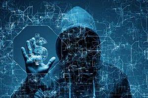 Microsoft nuôi hacker để tự bảo vệ mình