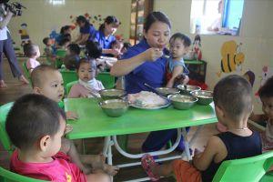Vụ cô giáo mầm non quỳ gối: Bộ Giáo dục Đào tạo yêu cầu báo cáo