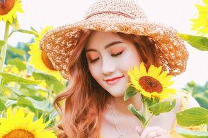 Hot girl Đại học Kiểm sát Hà Nội rạng ngời giữa cánh đồng hướng dương