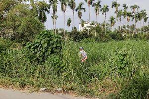 Bàng hoàng phát hiện thi thể người đàn ông nhiều hình xăm đang phân hủy trong bãi cỏ