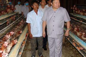 Chủ tịch Hội NDVN thăm làng tỷ phú 50 năm nuôi gà đẻ ở miền Tây