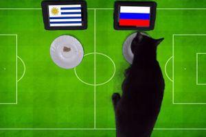 'Tiên tri' mèo đen dự đoán Nga sẽ đả bại Uruguay