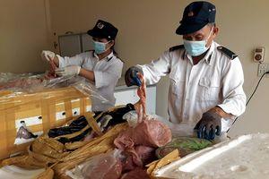 Diễn Châu: Tiêu hủy gần 700kg sản phẩm động vật