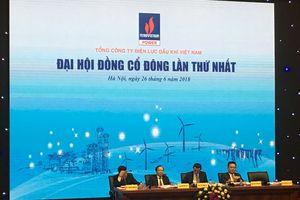 Đại hội đồng cổ đông PV Power: Ước lợi nhuận 6 tháng đạt 1.250 tỷ đồng