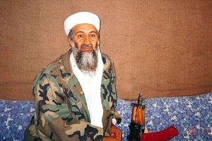 Cựu vệ sĩ của cựu trùm khủng bố Osama bin Laden bị bắt ở Đức