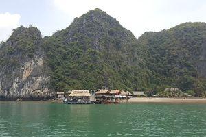 Hải Phòng: Lượng khách du lịch tăng hơn 16% so với cùng kỳ
