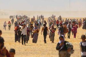 Khủng hoảng di dân thách thức giá trị tự do phương Tây