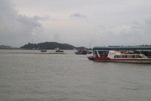 Vân Đồn, Quảng Ninh: Người dân, doanh nghiệp khốn đốn vì tỉnh treo các dự án để chờ quy hoạch