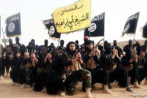 Hơn 10.000 phần tử khủng bố IS ẩn nấp tại châu Phi