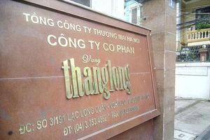 Vang Thăng Long bị kiểm toán đưa ra nhiều điểm ngoại trừ