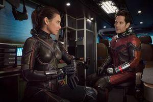 Người Kiến và Chiến binh Ong: Bom tấn mùa hè chuẩn bị ra rạp của nhà Marvel