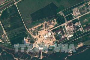 Mỹ không đề ra hạn chót cho việc phi hạt nhân hóa của Triều Tiên