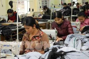 Doanh nghiệp thành lập mới ở Nghệ An tăng 15%/năm