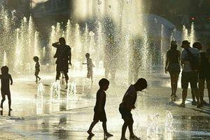 Nắng nóng kéo dài khiến hàng chục người Mỹ, Canada thiệt mạng