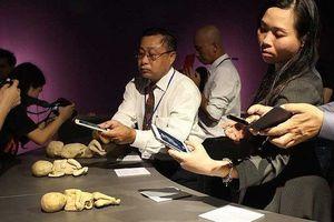Triển lãm cơ thể người tại TP.HCM làm 'nóng' họp báo của bộ Văn hóa