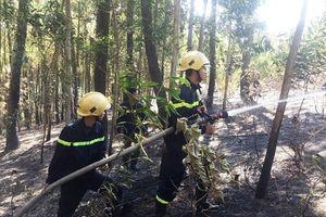 Ninh Bình: Hơn 300 người tham gia chữa cháy rừng dưới nắng nóng 40 độ