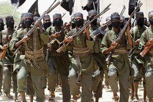 Nhóm Hồi giáo cực đoan Somalia bảo vệ môi trường