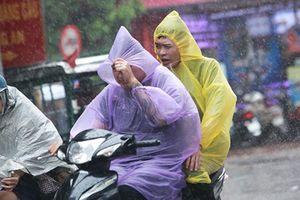 Người Hà Nội sung sướng đi dưới 'mưa vàng' sau những ngày nắng cháy da