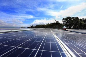 Khởi công dự án điện mặt trời 5.000 tỉ đồng