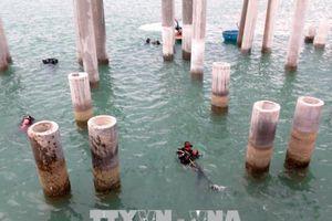Khai quật khảo cổ học tàu cổ đắm Dung Quất