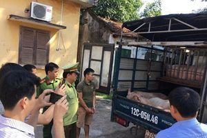 Thịt lợn Trung Quốc đang nhập ngược về Việt Nam?