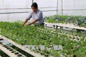 Thúc đẩy một nền nông nghiệp thông minh