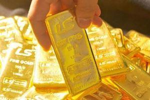 Giá vàng hôm nay 13.7: Giảm mạnh, thận trọng đầu tư