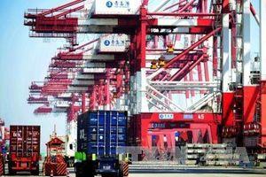 Trung Quốc 'săn tìm' nguồn cung mới thay thế hàng hóa nhập khẩu từ Mỹ