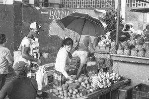 Cuba đưa kinh tế tư nhân vào hiến pháp
