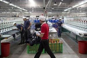 Bloomberg: 'Thật ngây thơ nếu nghĩ Việt Nam sẽ không bị tổn thương trước chiến tranh thương mại'
