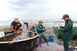 Nam Định cấm biển, cả hệ thống 'căng mình' phòng chống bão số 3