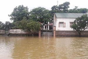 Hà Tĩnh: Đường ngập sâu trong nước, cán bộ xã đi làm bằng thuyền