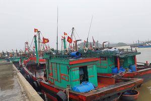 Người dân các tỉnh từ Thanh Hóa đến Hà Tĩnh mừng vì 'bão số 3 chỉ như áp thấp'