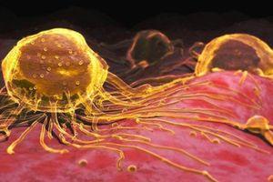 Trang cá nhân Facebook bị đóng vì quảng cáo nano vàng chữa ung thư