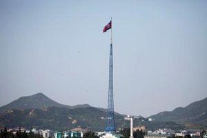 Giám đốc công ty Singapore bị buộc tội xuất hàng xa xỉ tới Triều Tiên
