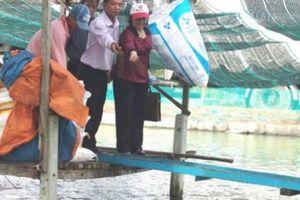 Tây Ninh: Hội 'chung tay góp sức' bức tranh 'Tam nông' khởi sắc