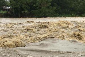 Nghệ An: Đã tìm thấy 35 người vào rừng hái măng trước bão Sơn Tinh bị mất liên lạc