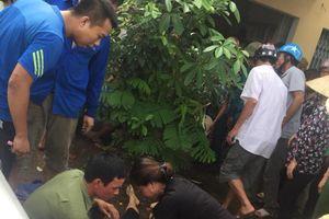 Thanh Hóa: Cả gia đình bị điện giật