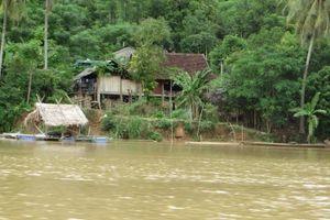 Cử tri Nghệ An lo ngại tình trạng công trình thủy điện 'mọc' chi chít